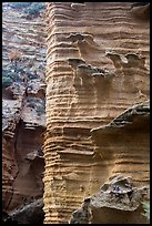 Water-sculptured sandstone wall, Lobo Canyon, Santa Rosa Island. Channel Islands National Park ( color)