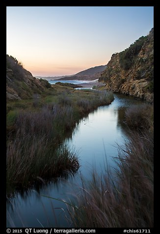 Wetland at he bottom of Water Canyon, and Ocean, sunrise, Santa Rosa Island. Channel Islands National Park (color)