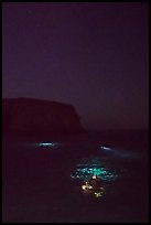 Night diving with lights, Santa Barbara Island. Channel Islands National Park ( color)