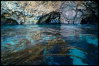 Clear waters, kelp, annd sea caves, Santa Cruz Island. Channel Islands National Park ( color)