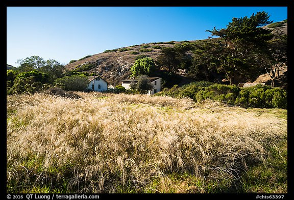 Grasses and former ranch, Scorpion Canyon, Santa Cruz Island. Channel Islands National Park (color)