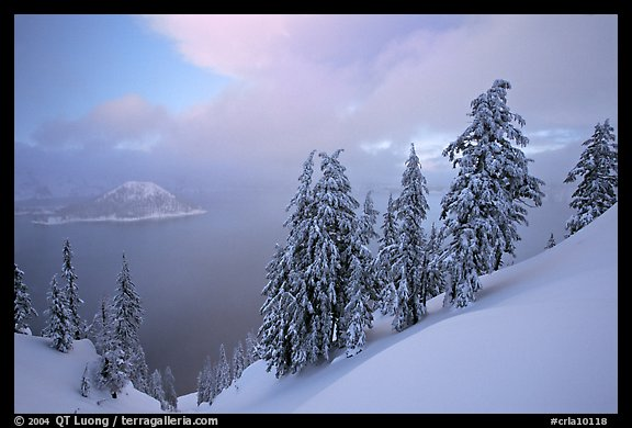 Snow-covered trees and misty lake at sunset. Crater Lake National Park, Oregon, USA.