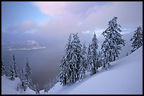 Snow-covered trees and misty lake at sunset. Crater Lake National Park, Oregon, USA. (color)