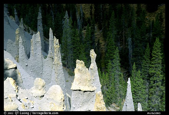 The Pinnacles. Crater Lake National Park (color)