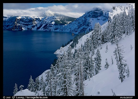 Snowy trees and slopes. Crater Lake National Park (color)