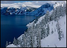 Snowy trees and slopes. Crater Lake National Park, Oregon, USA.
