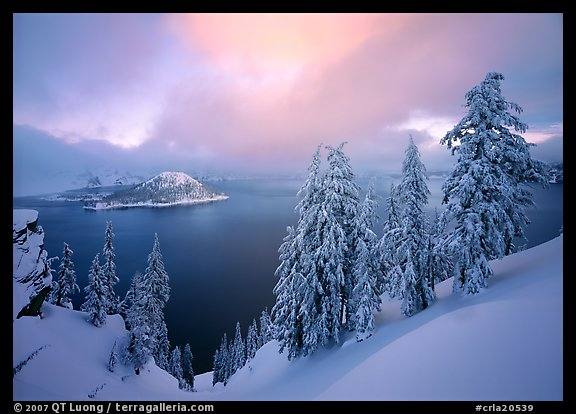 Snowy trees and lake with low clouds colored by sunset. Crater Lake National Park (color)