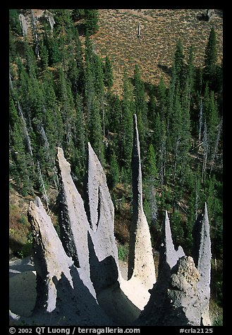 Needle-like formations of rock. Crater Lake National Park (color)