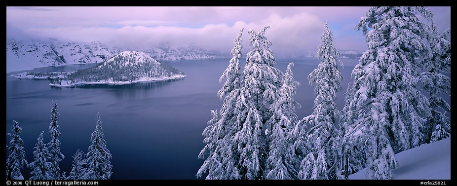 Snowy trees, lake, and Wizard Island. Crater Lake National Park (color)