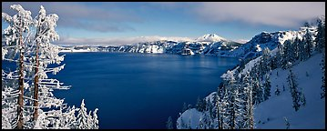 Lake and snow-covered trees. Crater Lake National Park, Oregon, USA.