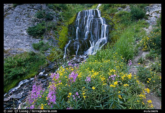 Vidae Falls and stream. Crater Lake National Park (color)