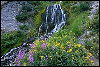 Vidae Falls and stream. Crater Lake National Park, Oregon, USA. (color)