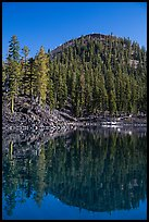 Wizard Island's cinder cone reflected in Governors Bay. Crater Lake National Park ( color)