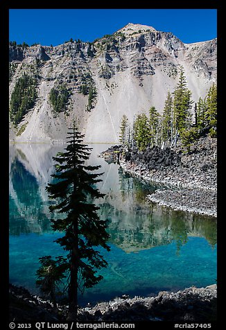 Hemlock, Watchman reflection, and clear waters, Wizard Island. Crater Lake National Park (color)
