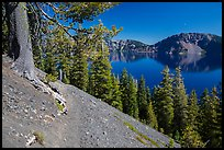 Wizard Island summit trail. Crater Lake National Park ( color)
