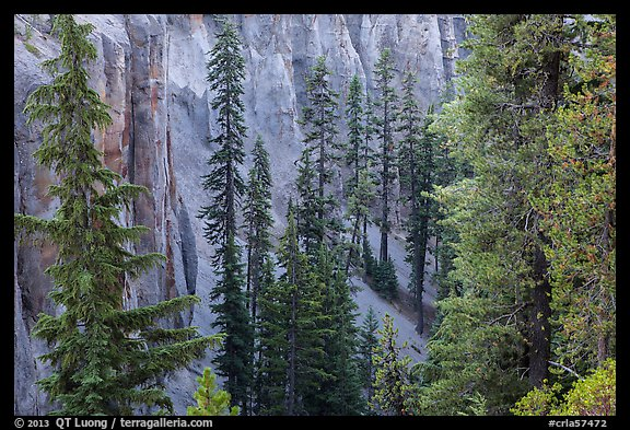 Hemlock and spires of fossilized ash in Munson Creek canyon. Crater Lake National Park (color)