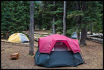 Mazama Village campground. Crater Lake National Park ( color)