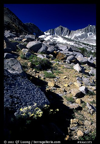 Mountains near Sawmill Pass, morning. Kings Canyon National Park (color)