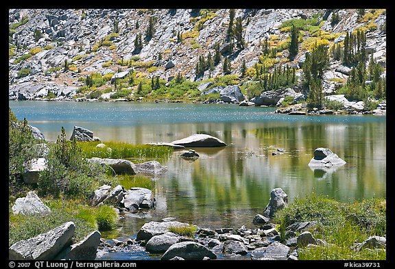Lake and tree reflections, Lower Dusy Basin. Kings Canyon National Park (color)