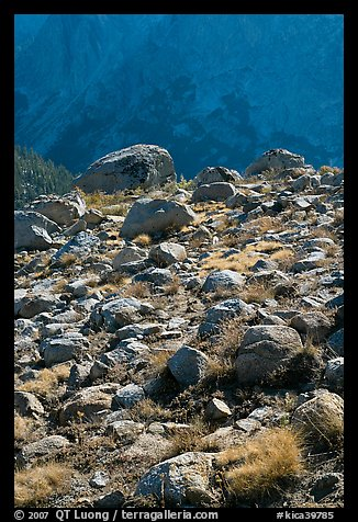 Boulders in meadow and Le Conte Canyon walls. Kings Canyon National Park (color)