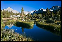 Grasses, creek, and Columbine Peak. Kings Canyon National Park, California, USA.