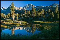 Trees, grasses, calm reflections, Lower Dusy basin. Kings Canyon National Park, California, USA. (color)