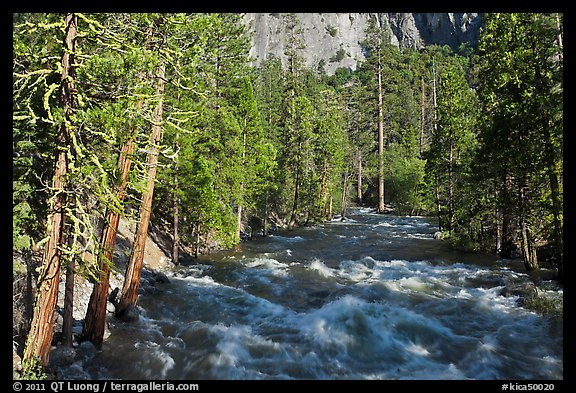 Roaring River in the spring. Kings Canyon National Park (color)