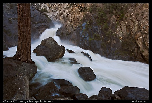 Forceful waterfall rushing through narrow granite chute. Kings Canyon National Park (color)