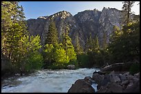 Rushing river and trees, and cliff in spring. Kings Canyon National Park, California, USA. (color)