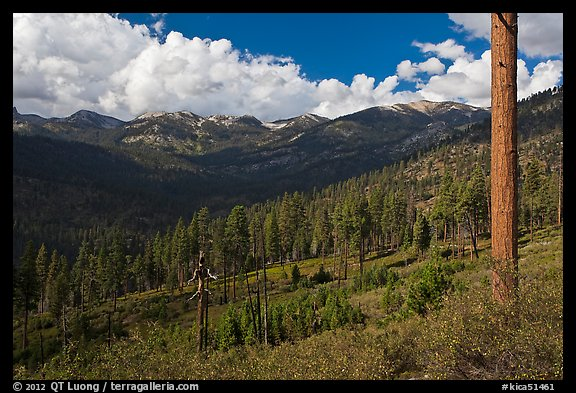 Monarch Divide. Kings Canyon National Park (color)