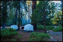 Azalea Campground. Kings Canyon National Park ( color)