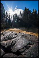 Meadow and sun see from top of Mark Twain Stump. Kings Canyon National Park ( color)