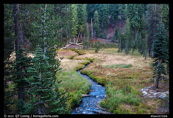 Kings Creek, meadow and forest. Lassen Volcanic National Park (color)