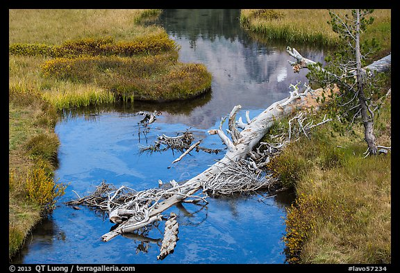 Fallen tree in Kings Creek with Lassen Peak reflection. Lassen Volcanic National Park (color)