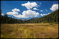 Drakesbad meadow, Warner Valley. Lassen Volcanic National Park ( color)