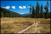 Trail, Warner Valley. Lassen Volcanic National Park, California, USA.