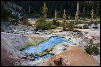 Devils Kitchen geothermal area. Lassen Volcanic National Park ( color)