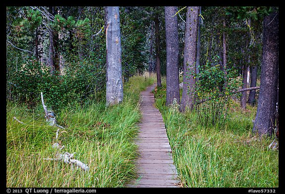 Boardwalk in meadow, Hot Springs Creek. Lassen Volcanic National Park (color)