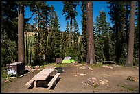 Southwest campground. Lassen Volcanic National Park ( color)