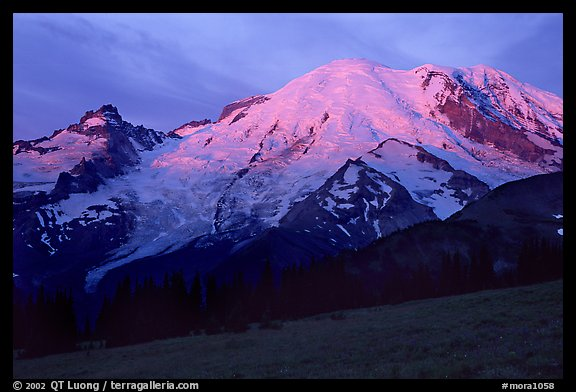 North Face of Mt Rainier, sunrise. Mount Rainier National Park (color)