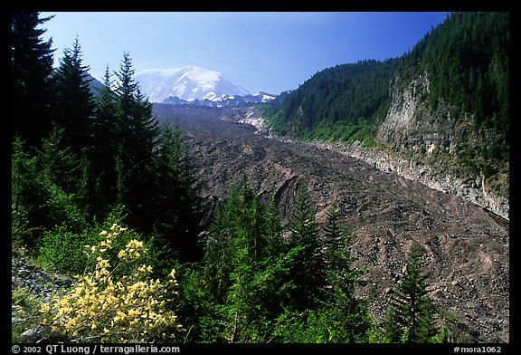 Mt Rainier above debris-covered Carbon Glacier. Mount Rainier National Park (color)