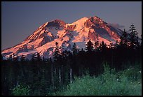 Mt Rainier at sunset from  South. Mount Rainier National Park, Washington, USA. (color)