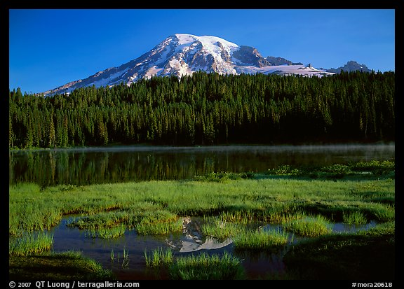 Reflection Lake and Mt Rainier, early morning. Mount Rainier National Park (color)
