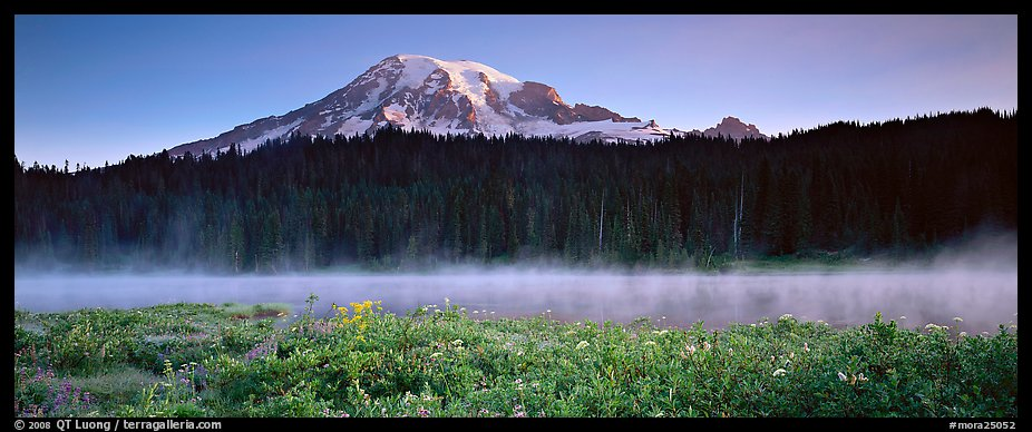 Wildlflowers, rising fog, and Mt Rainer at dawn. Mount Rainier National Park (color)