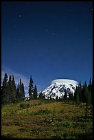 Mount Rainier and stars by night. Mount Rainier National Park, Washington, USA.