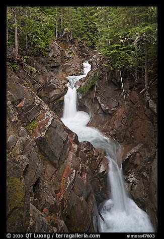 Cascades, Van Trump Creek. Mount Rainier National Park (color)