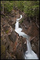 Cascades, Van Trump Creek. Mount Rainier National Park ( color)