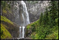 Forest and waterfall. Mount Rainier National Park ( color)