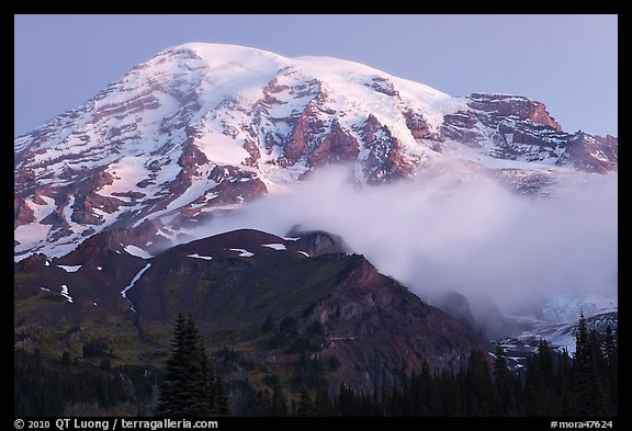 Mount Rainier and fog at dawn. Mount Rainier National Park (color)