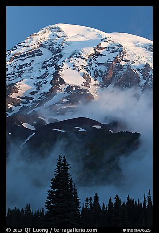 Mount Rainier rising above fog at sunrise. Mount Rainier National Park (color)